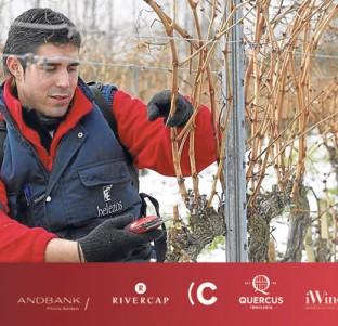 Videochat con Manuel Gómez (Bodegas Zugober)